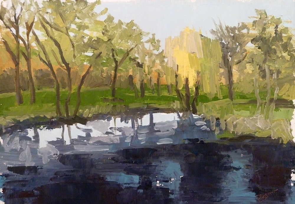 Pond Study 30